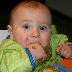 vaste voeding, starten met 6 maanden la leche league borstvoeding